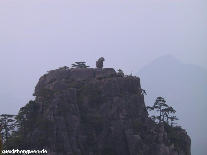 Gelber Berg – Monkey watching over the sea