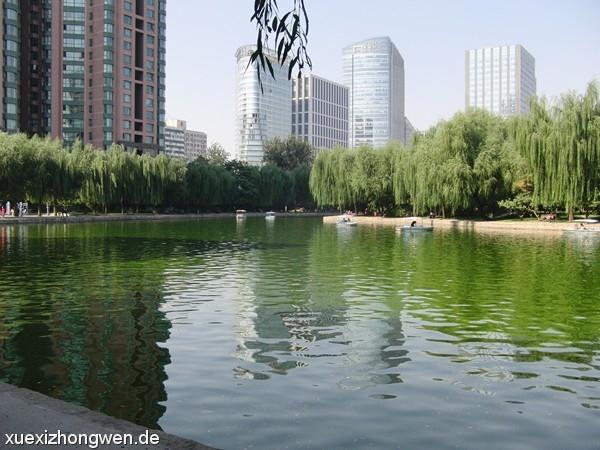 Hochhäuser im Parkhintergrund