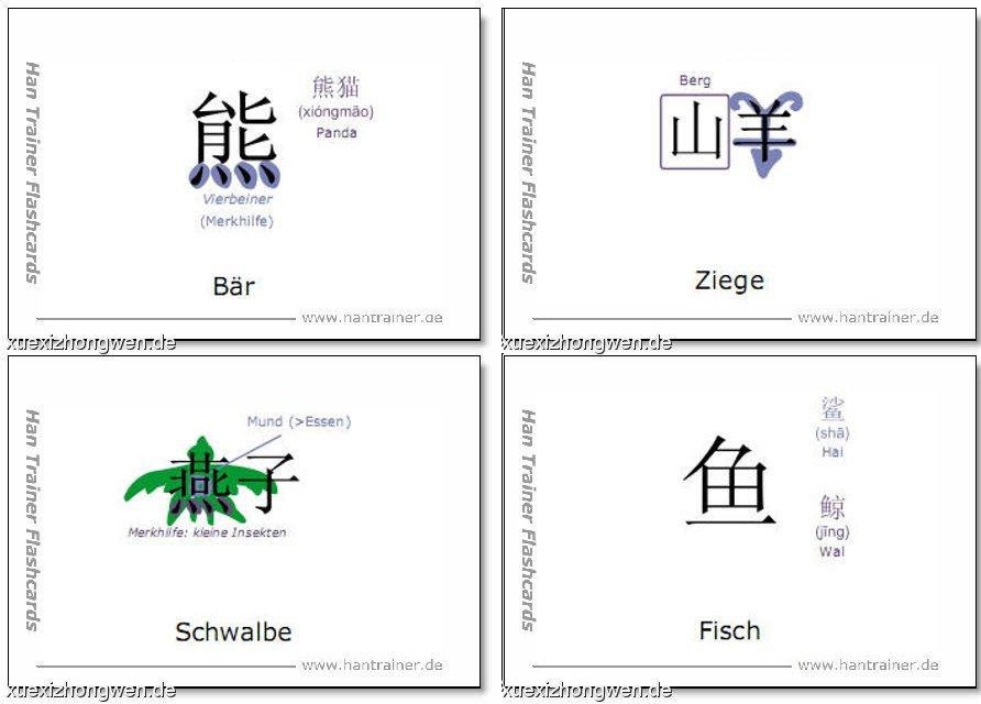 chinesisch lernkarten merkhilfen